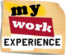 MY WORK EXPERIENCE BLOG