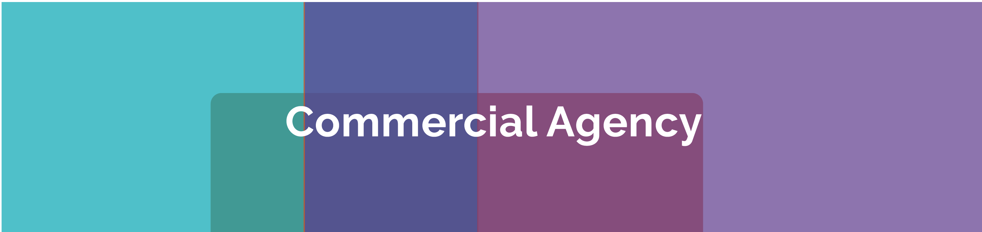 Sales | Lettings | Acquisitions | Disposals | Consultancy Header Image