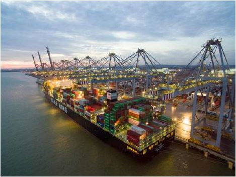 Shipping Alliance Chooses DP World's UK Ports for 10 Trade Counters to US & Asia